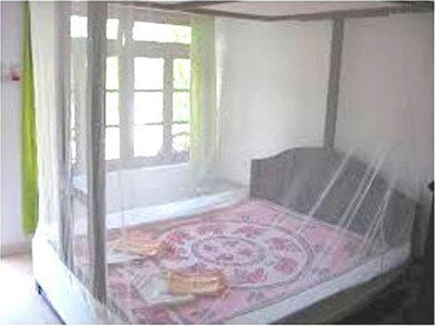 Shahji Creation Mosquito Net for Double Bed 01.2